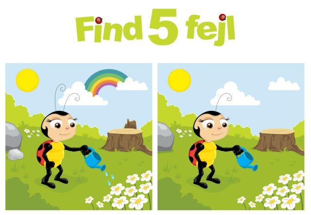 find 5 fejl